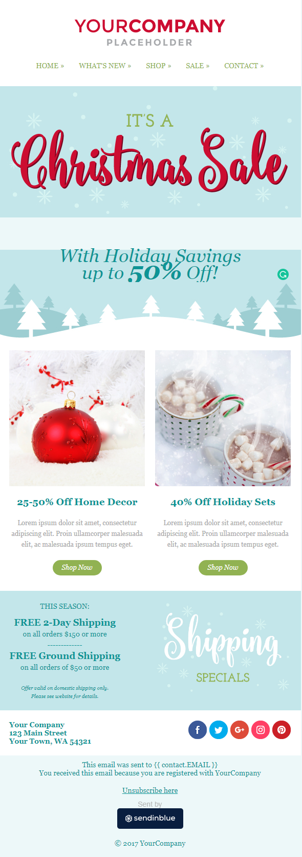 Christmas email newsletter example